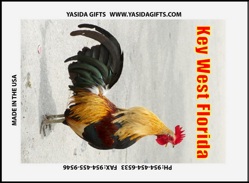 ROOSTER CROWING FLAT MAGNET 12PC * UOM: dozen (dz)* Minimum Order: 1